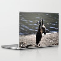 ducks Laptop & iPad Skins featuring Ducks by Phil Hinkle Designs