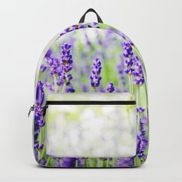 Field of Lavender 01 Backpack