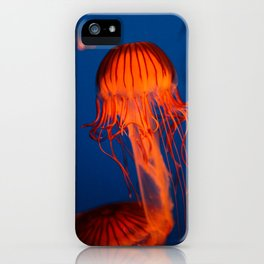 Jelly B iPhone Case