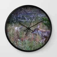 coyote Wall Clocks featuring Coyote by Stu Naranch