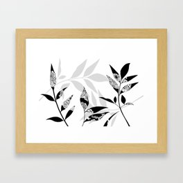 Shadow Play #1 Nature's Best Framed Art Print