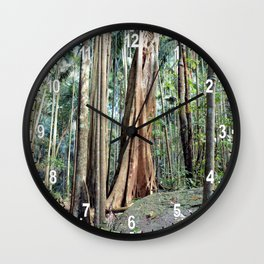 Curtis Falls Rainforest Wall Clock