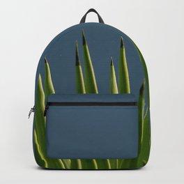 Joshua Tree Sky Backpack