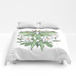 Metamorphosis - Luna Moth Comforters