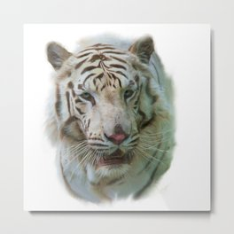 Digital painting of White Tiger portrait Metal Print