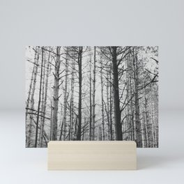Into the Woods Mini Art Print