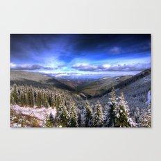Winter Vision Canvas Print
