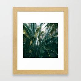 The Light Side Framed Art Print
