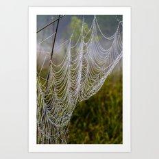 web in the field Art Print