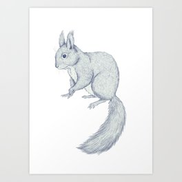 Squirrel sketch Art Print