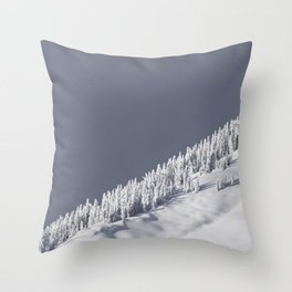 The Strom Has Past Throw Pillow