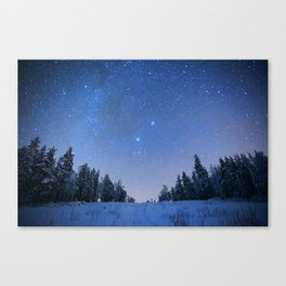 Blue Night Stars Wintry Forest Canvas Print