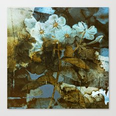 Fower in winter Canvas Print