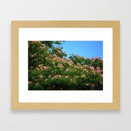 Mimosa Branch Framed Art Print