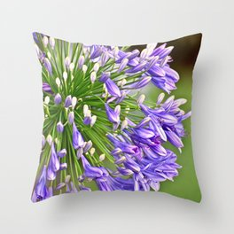Agapanthus (African Lily) Throw Pillow