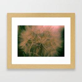 Flower Jos Framed Art Print
