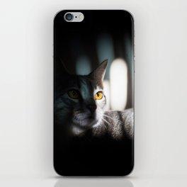 My Cat Dinah iPhone Skin