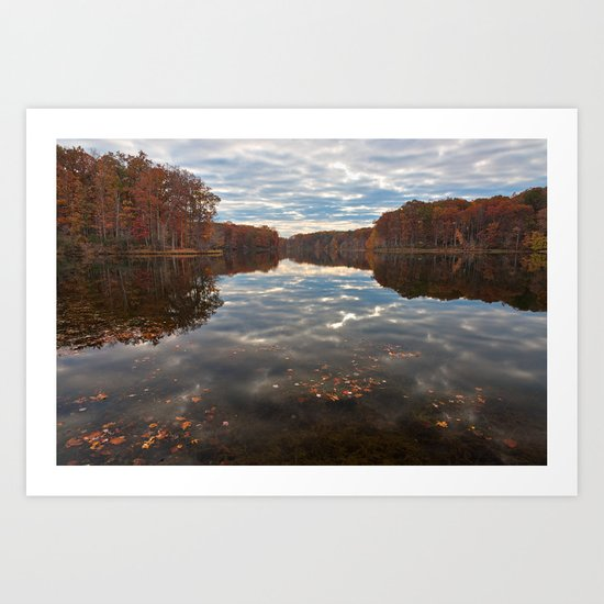 Seneca Fall Reflections Art Print