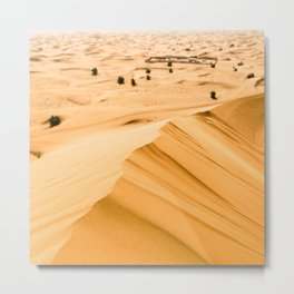 sand dunes on the desert Metal Print