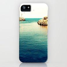 What's left iPhone (5, 5s) Slim Case