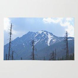 Blue Mountain Rug