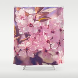 Sakura photography, pink blossoms Shower Curtain