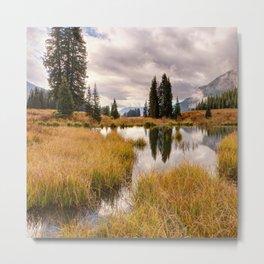 Colorado Fall Colors 3 Metal Print