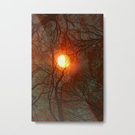 Sun and Trees and Trees and Sun Metal Print