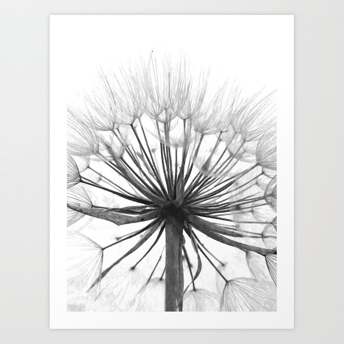 Black and White Dandelion Art Print
