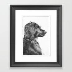 Tegan the dog Framed Art Print