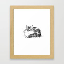 Maine Coon Cat - Pen and Ink Framed Art Print