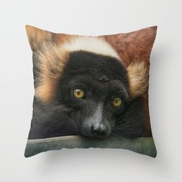Do YOU know what a Lemur thinks....? Throw Pillow