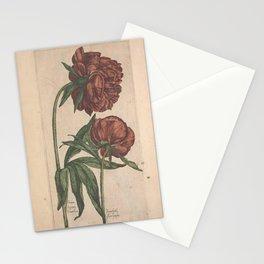 Flower peonia foemina2 Stationery Cards