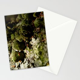 Colony Stationery Cards