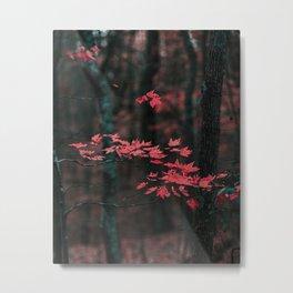 Red Leaves 3 Metal Print