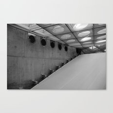 swift Canvas Print