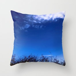 Nature Meets The Sky Above Throw Pillow