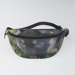 sweet german shepherd puppy, with a birch leaf on the nose Fanny Pack
