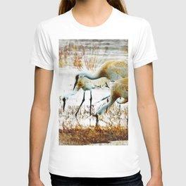 Sandhill Family T-shirt