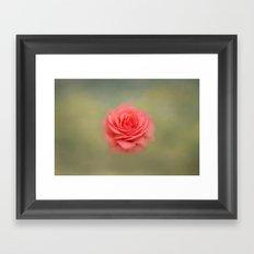 Rose Impressions Framed Art Print