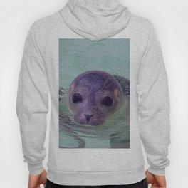 Cute Baby Seal 1217 Hoody