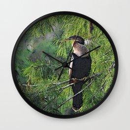 Roosting Anhinga Stylized Wall Clock