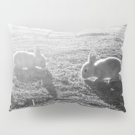 Bunny // Black and White Cute Nursery Photograph Adorable Baby Bunnies in the Field Pillow Sham
