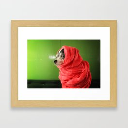 I liked them before they went mainstream Framed Art Print
