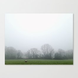 Lone Sheep Canvas Print