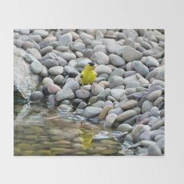 Golden Reflections Throw Blanket