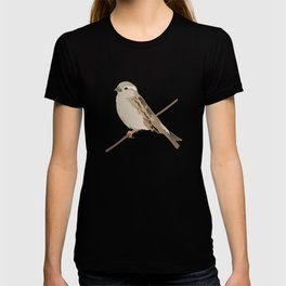 House Sparrow Bird on a Twig T-shirt