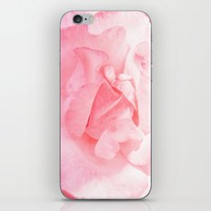 Bulgarian Rose I iPhone & iPod Skin
