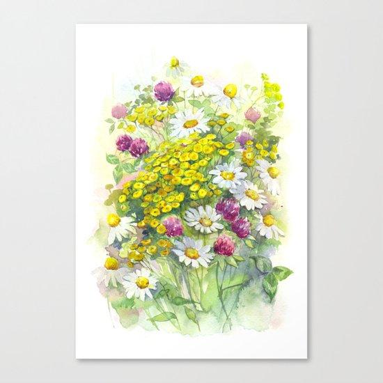 Watercolor meadow flowers spring Canvas Print