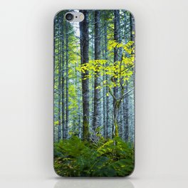 In the Woods iPhone Skin